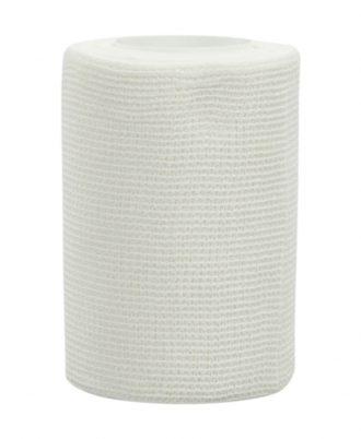 Econo-Paste Bandages